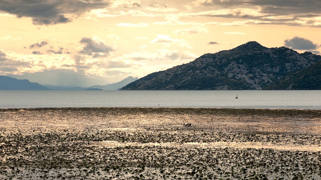 Montenegro-Lake-Skadar-Travel-Writer-Photographer