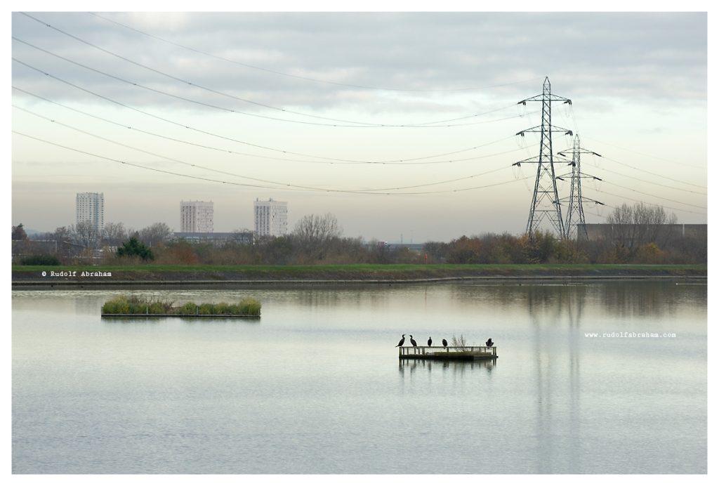 Walthamstow-Wetlands-London-Photo